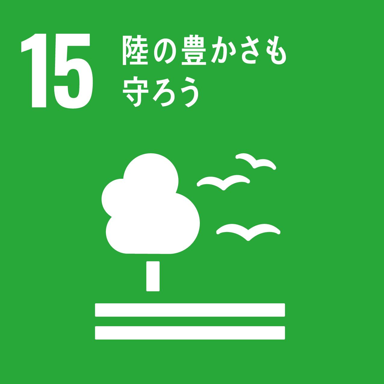 森林や土壌の保護をはじめ、環境を守る活動を推進します。